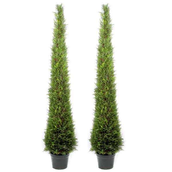 Artificial Cypress Leave Tower Cone Topiary Floor Cedar Tree in Pot (Set of 2) by Darby Home Co