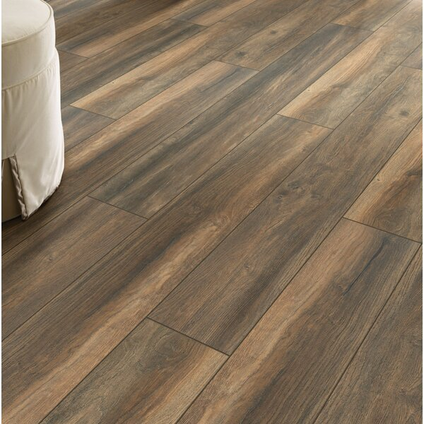 Lynkins Park  8 x 51 x 8mm Oak Laminate Flooring in Hill Top by Shaw Floors