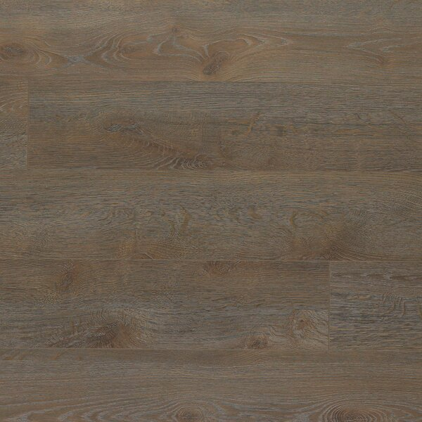 Elevae 6.13 x 54.34 x 12mm Oak Laminate Flooring in Gentry Oak by Quick-Step