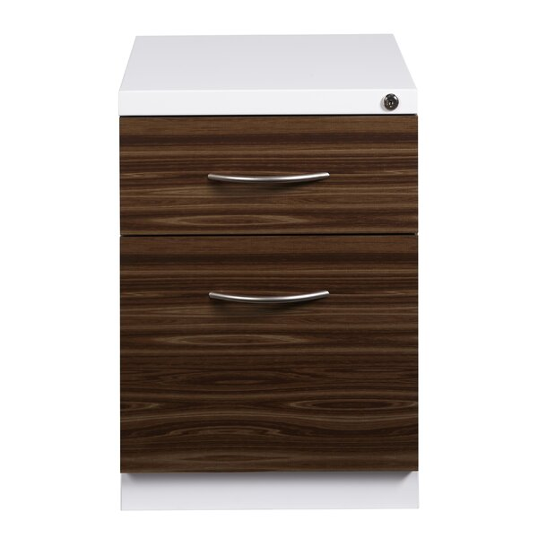 Zepeda Deep Pedestal 2-Drawer Mobile Vertical Filing Cabinet by Symple Stuff
