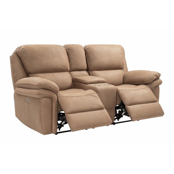 Therrien Power Reclining Loveseat by Winston Porter