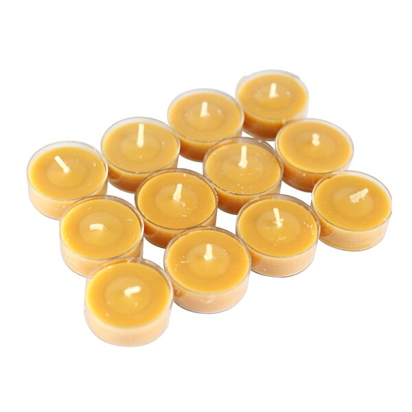 Scented Tea Light Candle in Pumpkin Spice Scented Orange (Set of 12) by Jeco Inc.