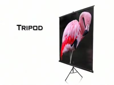 Tripod Series White Portable Projection Screen