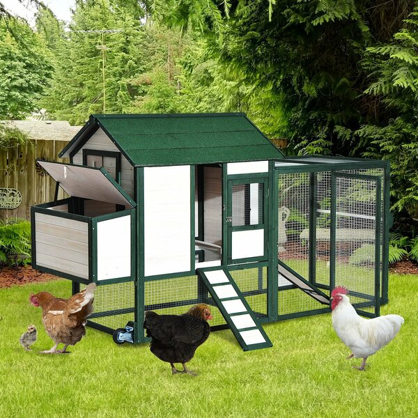 Garlington Portable Wooden Chicken Coop with Wheels Run and Nesting Box by Tucker Murphy Pet