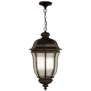 Bargain Oakhill Peruvian Bronze 1-Light Outdoor Hanging Lantern By Charlton Home