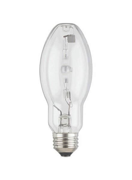 175W E26 Incandescent Edison Capsule Light Bulb by Westinghouse Lighting