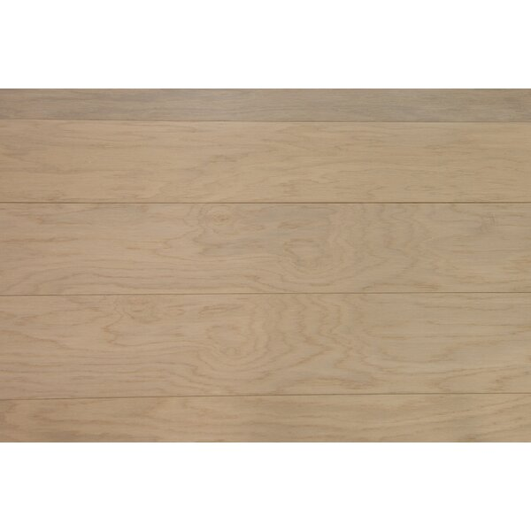 Sydney 7-1/2 Engineered Oak Hardwood Flooring in Ecru by Branton Flooring Collection