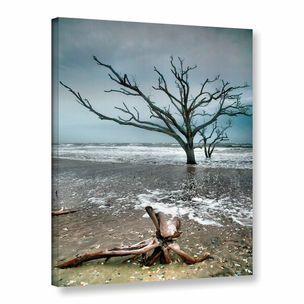 Trees In Surf by Steve Ainsworth Photographic Print on Wrapped Canvas by ArtWall