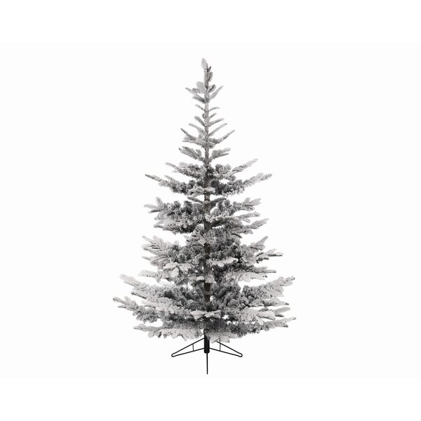 Northlight 8' Snowy Everland Layered Superior Flocked Nobilis Fir ...