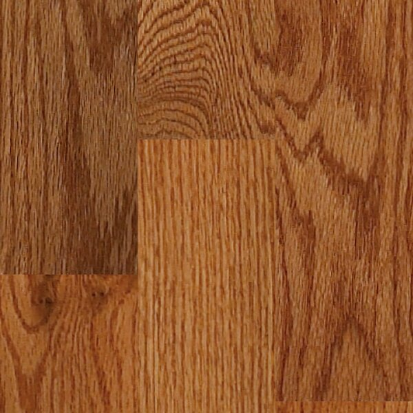 Sawgrass 3-1/4 Solid Red Oak Hardwood Flooring in Butter Rum by Shaw Floors