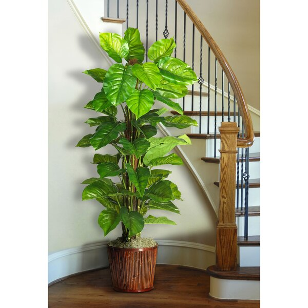 Silk Large Leaf Philodendron Floor Plant in Pot by Nearly Natural
