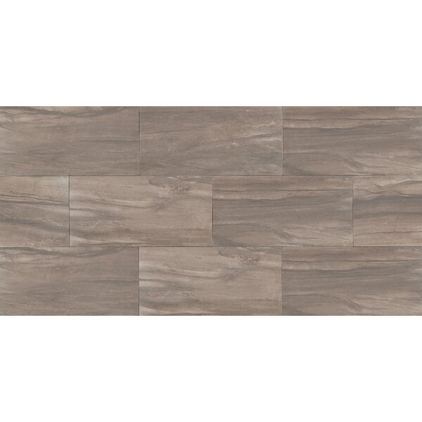 Athena 12 x 24 Porcelain Wood Look/Field Tile in Cliff by Bedrosians