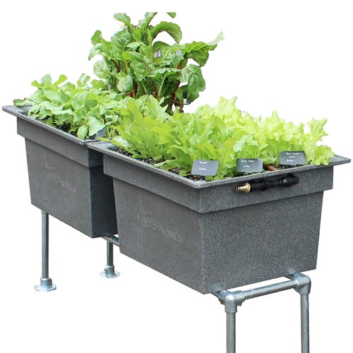 Divisadero 2 Piece Metal Self-Watering Planter Box Set Freep