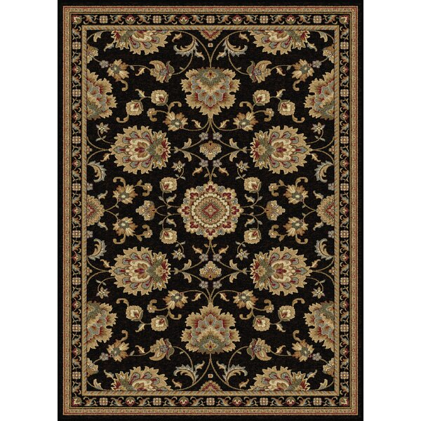 Clarence Black/Gold Area Rug by Astoria Grand
