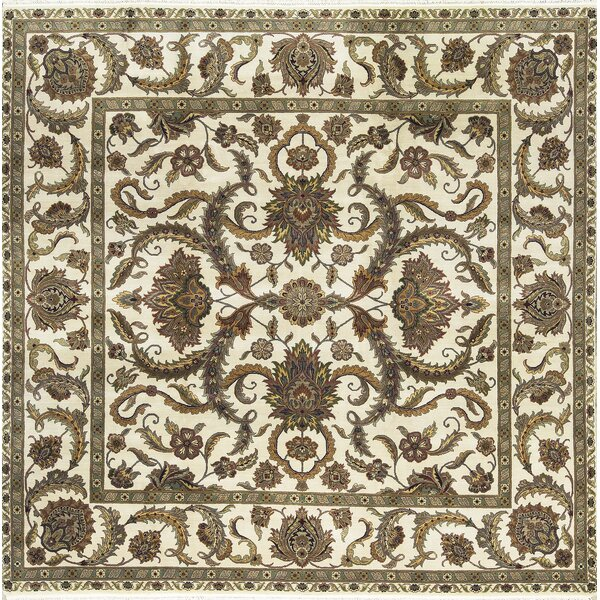 One-of-a-Kind Hand-Knotted Wool Ivory Indoor Area Rug by Bokara Rug Co., Inc.