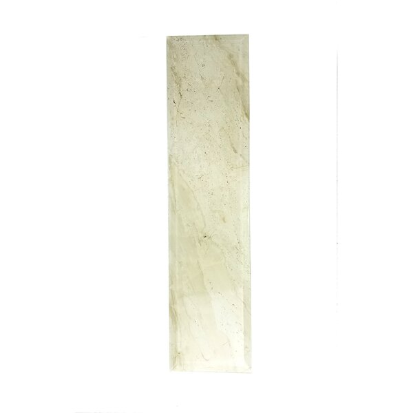 Nature 4 x 16 Beveled Glass Subway Tile in Creme/Brown Veins by Abolos