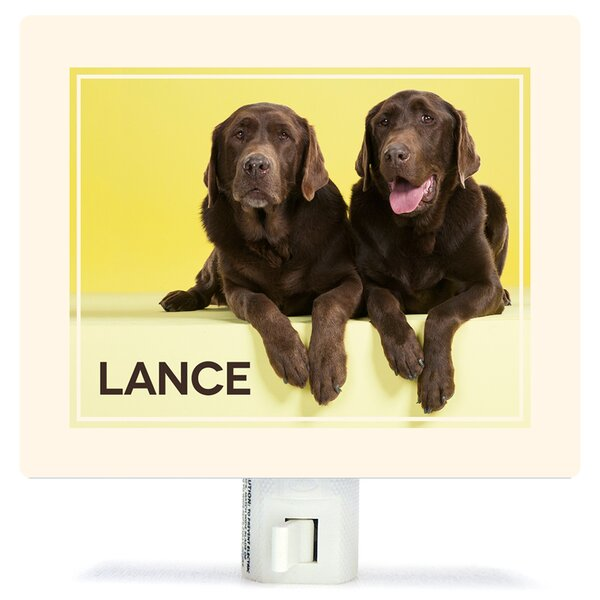 Chocolate Labs On Yellow by Catherine Ledner Personalized Canvas Night Light by Oopsy Daisy