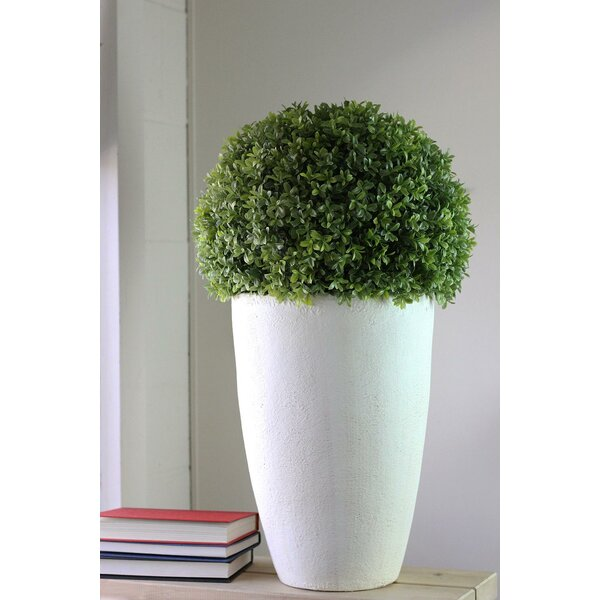 Artificial Desktop Boxwood Plant in Pot by Latitude Run