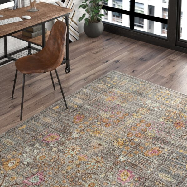 Bernardyn Gray/Multi Area Rug by Trent Austin Design