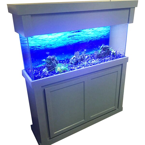 Mattson Aquarium Stand and Canopy Combo by Tucker Murphy Pet