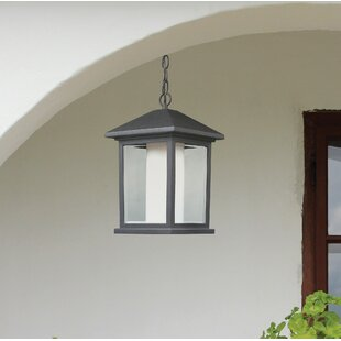 Olive 1-Light Outdoor Hanging Lantern By Andover Mills Outdoor Lighting