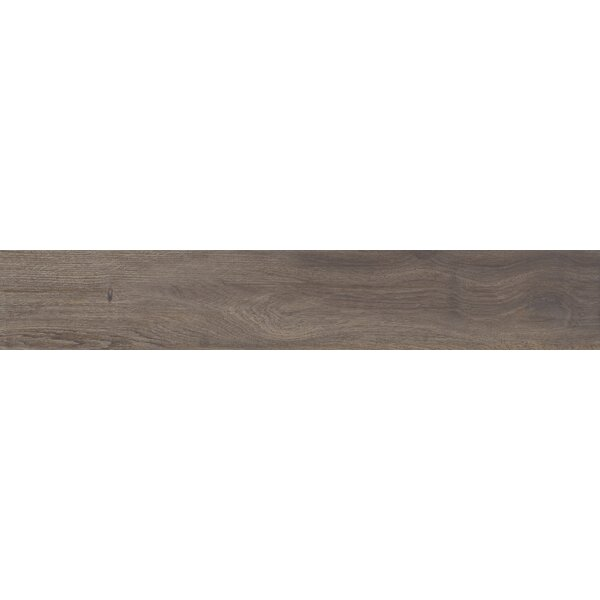 Centennial Arbor 6 x 24 Porcelain Wood Look Tile in Sand by Parvatile