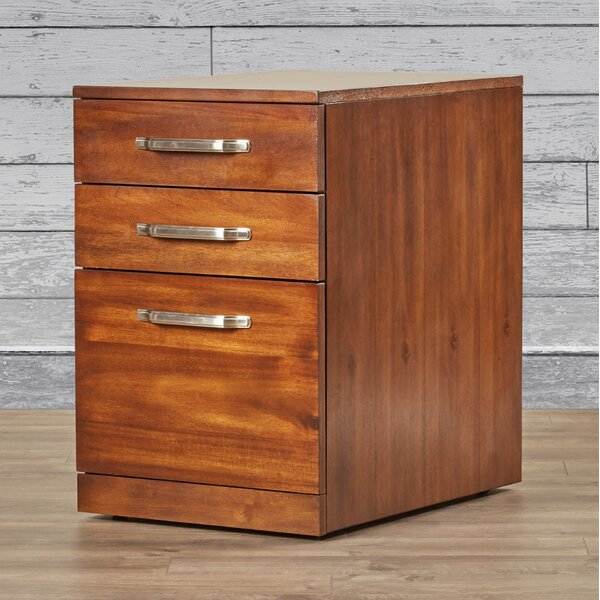 Bouley 3 Drawer File Cabinet by Three Posts