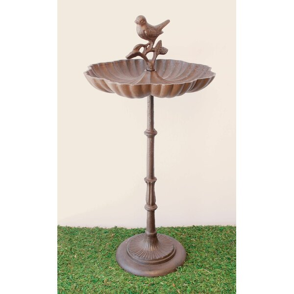 Feeding Time Birdbath by Marshall Home Garden