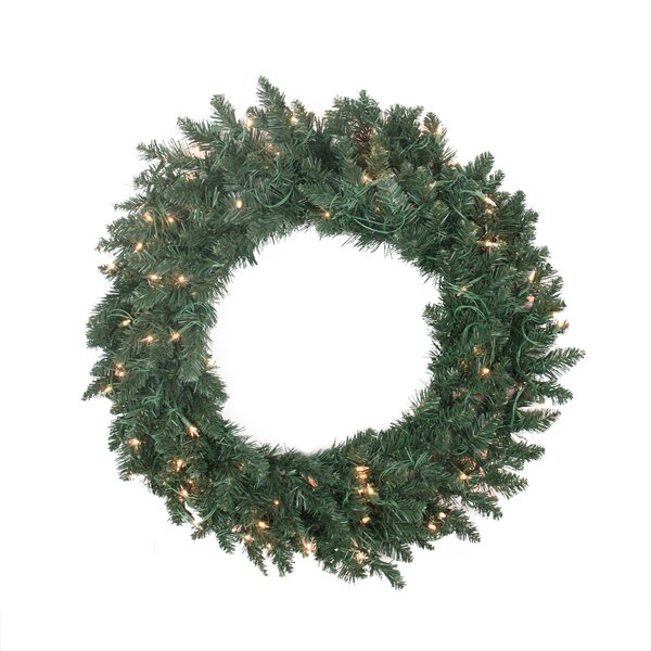 Pre-lit Traditional Pine Artificial Christmas Wreath by Northlight Seasonal