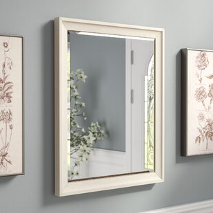 Ophelia & Co. Accent Mirror