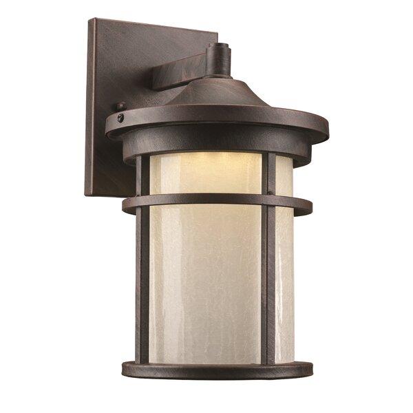 Ilene 1-Light Outdoor Wall Lantern by Latitude Run