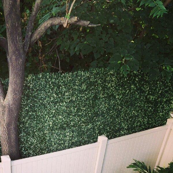 2 ft. H x 2 ft. W Artificial Lemon Fence Panel (Set of 4) by GreenSmart Dekor