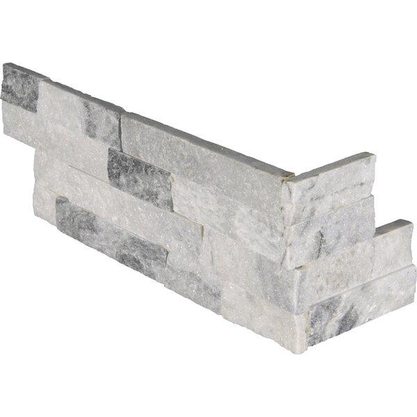 Alaska Gray 6 x 18 Marble Splitface Tile in Gray/White by MSI