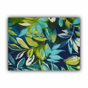 Java Indoor/Outdoor 17.75 Placemat (Set of 2) by Bay Isle Home