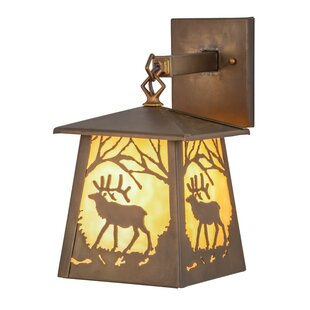 Great Price 2-Light Outdoor Wall Lantern By Meyda Tiffany