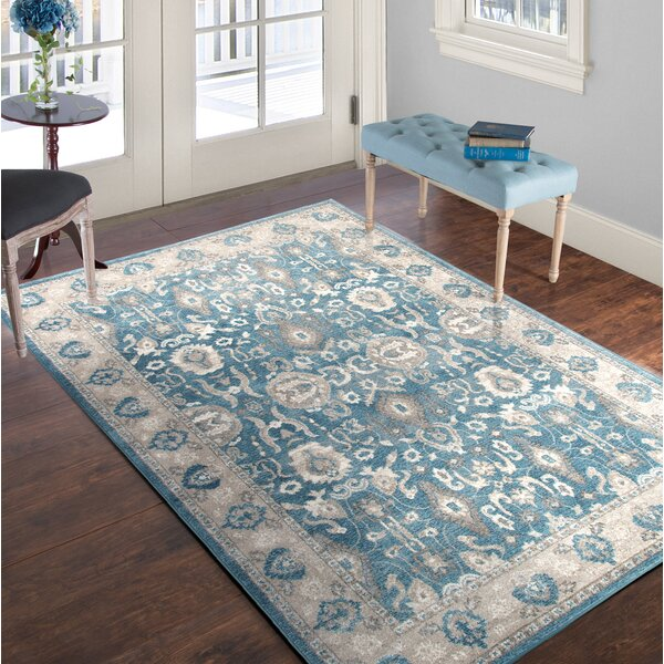 Vintage Blue/Beige Area Rug by Plymouth Home