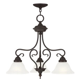 Lewisboro 3-Light Shaded Chandelier by Darby Home Co