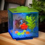 0.75 Gallon Betta Glow Cube Aquarium Kit by Elive