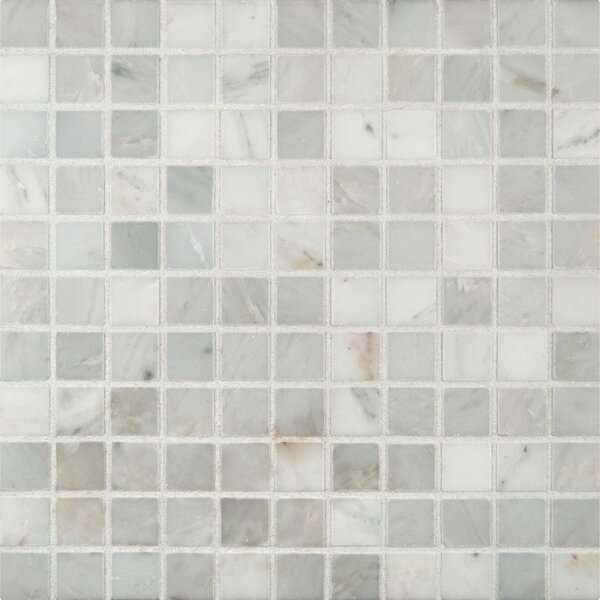 Arabescato Honed 1 x 1 Marble Mosaic Tile in White by MSI