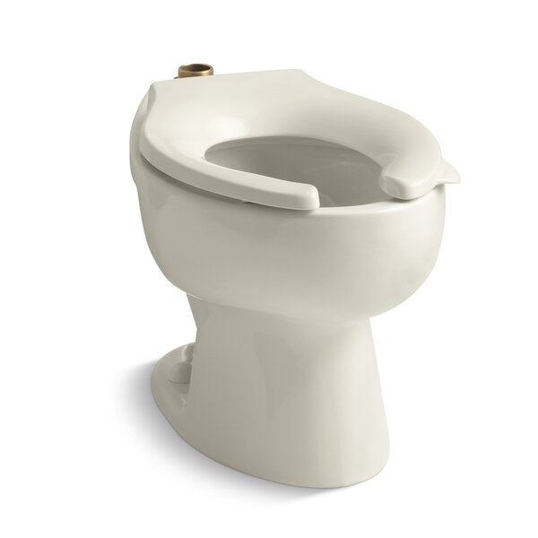 Wellcomme 1.6 GPF Flushometer Valve Elongated Toilet Bowl with Top Inlet, Requires Seat by Kohler