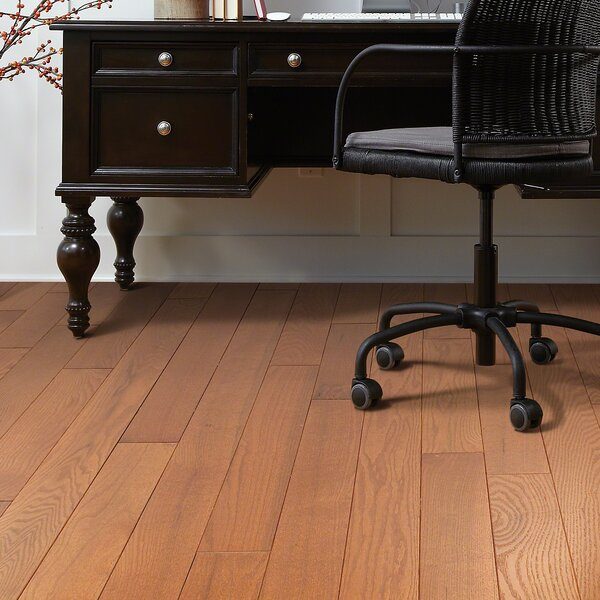 Basinger 4 Solid Red Oak Hardwood Flooring in Gainesville by Shaw Floors
