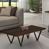 https://secure.img1-ag.wfcdn.com/im/27267245/resize-h160-w160%5Ecompr-r85/6135/61356605/camellia-coffee-table.jpg