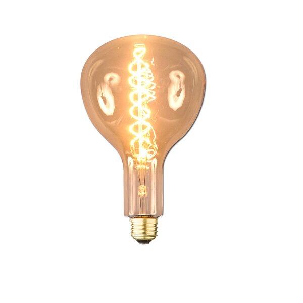 60W E26 Incandescent Vintage Filament Light Bulb by Aspen Brands