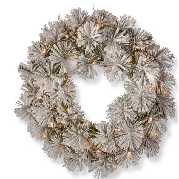 24 Pine Lighted Wreath by Darby Home Co