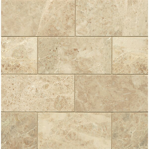 3 x 6 Polished Marble Mosaic Tile in Cappuccino by Grayson Martin