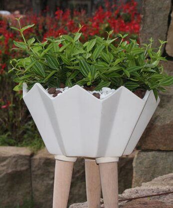 Kobe Ceramic Pot Planter by George Oliver