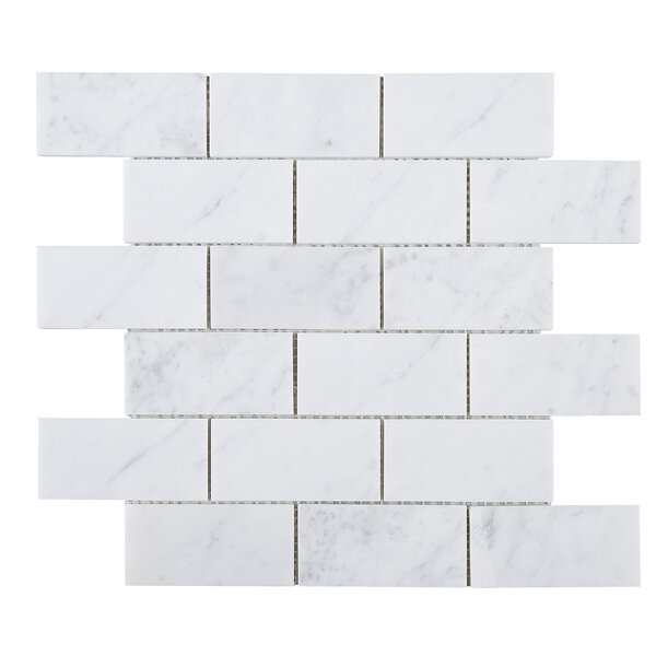 Rectangle Marble Mosaic Tile in White by Multile
