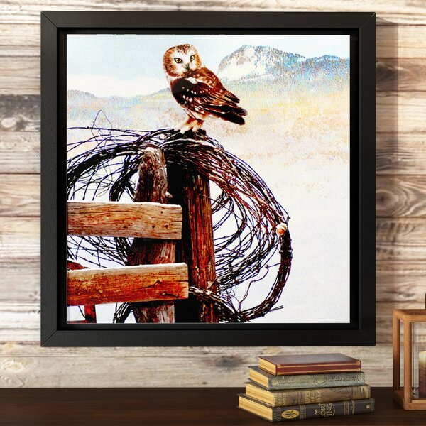 Owl on Rusty Fence Framed Painting Print on Wrapped Canvas by Loon Peak