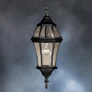 Top Reviews Connan 1-Light Outdoor Hanging Lantern By Astoria Grand