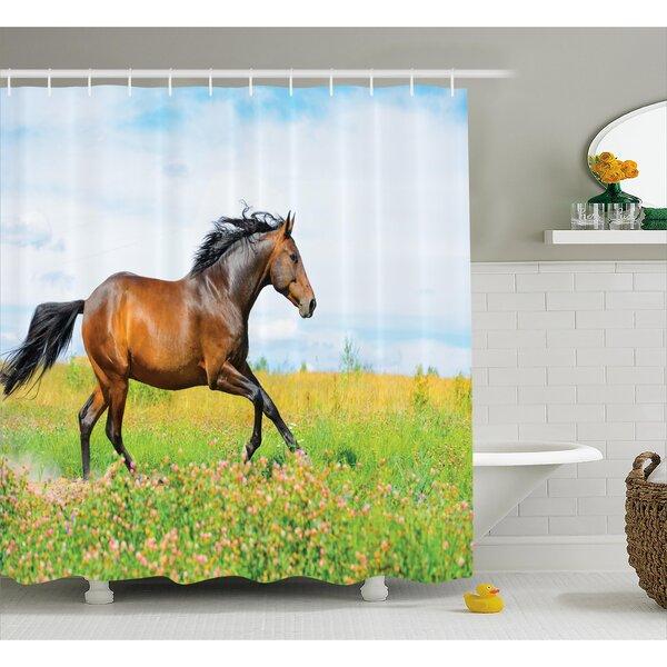 Hamilton Horse Rural Flowers Shower Curtain by Ebern Designs